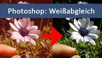 Photoshop: Weißabgleich machen – zuverlässig & schnell