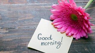 Witzige Guten-Morgen-Sprüche: Ideen, anderen einen schönen Tag zu wünschen
