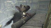 The Last Guardian: Ex-Director denkt bereits über ein neues Spiel nach