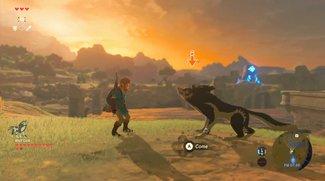 Zelda - Breath of the Wild: Nachfolger könnte ein Multiplayer-Spiel sein