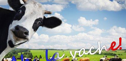 Französische Sprüche: Die witzigsten Redensarten der Franzosen