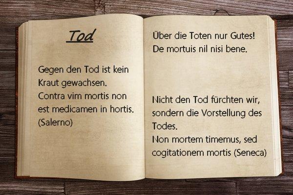 """Lateinische Sprichwörter: Sprüche und Zitate auf """"Schlau"""""""