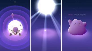 Pokémon GO: Ditto fangen - ab sofort möglich und so geht's