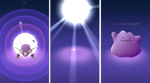 Pokémon GO: Ditto fangen - diese Gen-2-Pokémon werden zum Formwandler