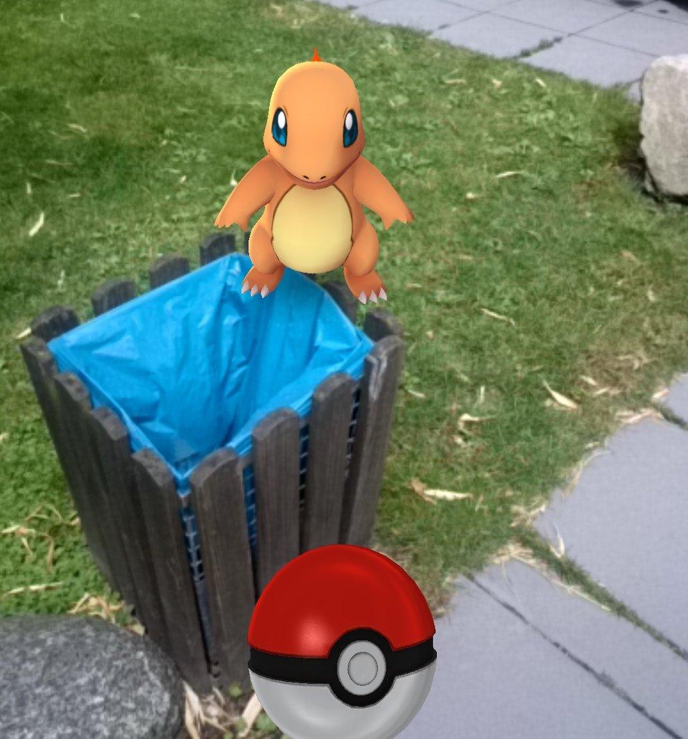 Ein Glumanda auf einer Mülltonne? Hoffentlich fängt sie nicht gleich Feuer!