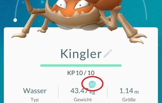 Pokemon GO: XL XS - Einfluss von Größe und Gewicht im Spiel
