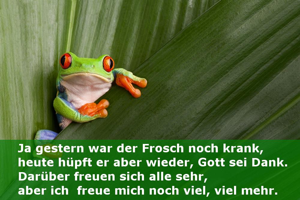 Gedicht lustig frosch Weisheiten Sprüche