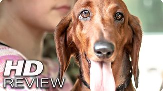 Wiener Dog - Kritik