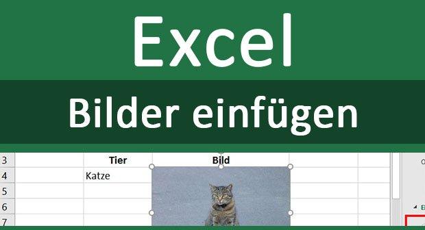 Bilder In Excel Einfügen Automatisch