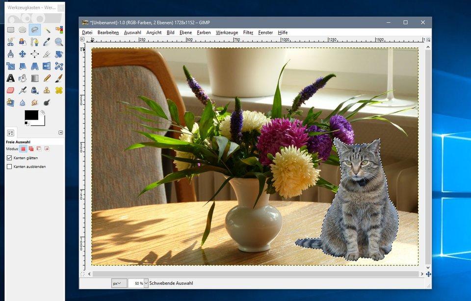 Gimp: Mit dem Lasso-Werkzeug fügt ihr ein Foto in ein Foto ein.