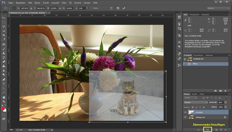 Photoshop: Setzt die Transparenz herunter, um das Bild in Größe und Position anzupassen.