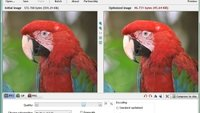 RIOT (Radical Image Optimization Tool)