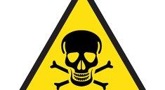 Per Giftköderradar, Giftköderatlas und App Giftköder melden, finden und Tiere schützen