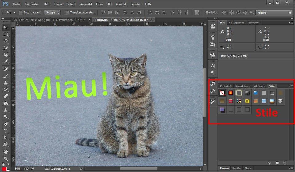 Auch in Photoshop könnt ihr Text in ein Bild einfügen.