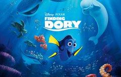 Findet Nemo 3: Wer...