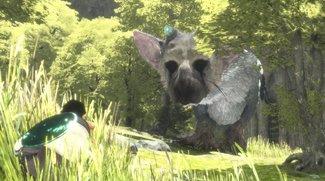 Sonys Lineup für die Tokyo Game Show ist da – The Last Guardian fehlt