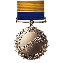 Die Medaille für erfolgreiche Versorgungssoldaten.