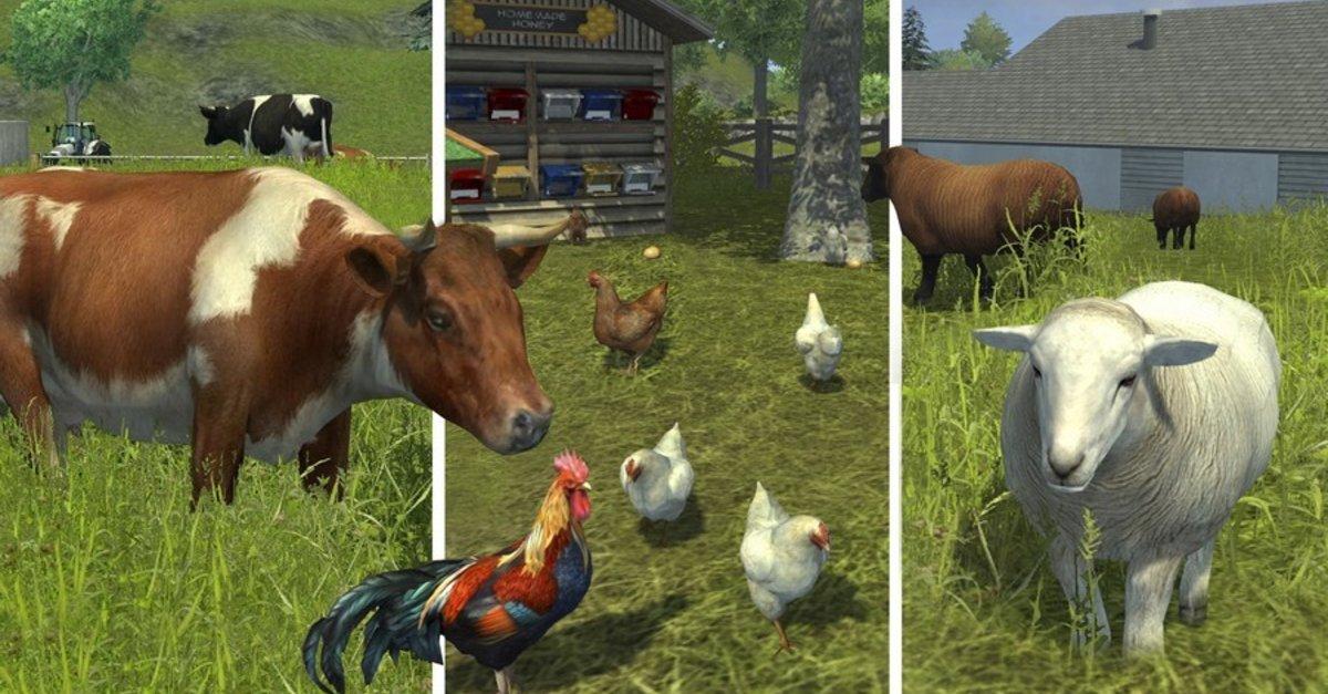 Tiere Züchten Spiele