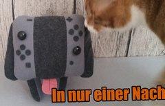 Nintendo Switch: So schön...