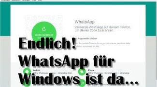 Top-Download der Woche 43/2016: WhatsApp für Windows