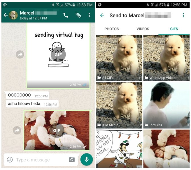 WhatsApp Beta-Version 2.16.293