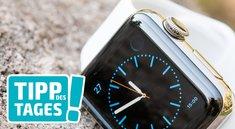 Display der Apple Watch gedimmt aktivieren, so gehts