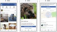 Facebook-Marketplace: Nutzer sabotieren den Launch mit unmoralischen Angeboten