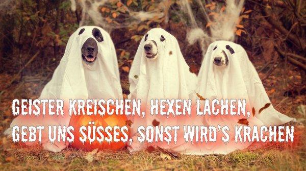 Die Besten Halloween Spruche Zur Hexennacht Fur Whatsapp Facebook