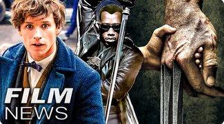 5 HARRY POTTER Spin-Off Filme - LOGAN - erstmal kein BLADE - FILM NEWS