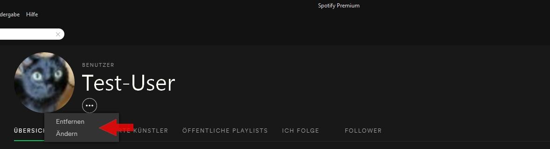 Spotify Profilbild