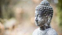Was bedeutet Karma und wie betrifft es dich?