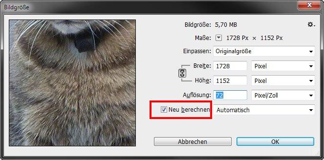 Das Häkchen entscheidet in den Standard-Einstellungen über die Art wie die Bildauflösung geändert wird.