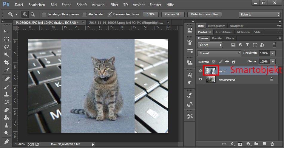 Photoshop hat das Bild automatisch als Smartobjekt eingefügt.