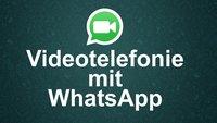 WhatsApp: Videoanrufe für Android, iOS und Windows-Phones angekündigt