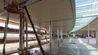 Campus 2: Apple zeigt Mitarbeitern neue Bilder ihres zukünftigen Büros