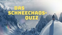 Das Schneechaos-Quiz: Erkennst Du diese verschneiten Screenshots?