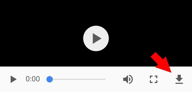 Chrome Video Download-Symbol