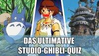 Teste Dich: Wie gut kennst Du Dich wirklich mit Filmen von Studio Ghibli aus?