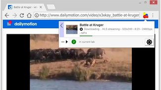 Video DownloadHelper für Chrome