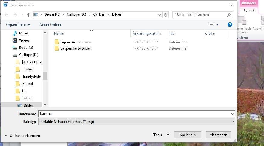 screenshot-word-als-grafik-speichern