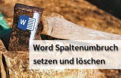 In Word einen Spaltenumbruch...