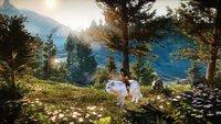 Wild: Endlich Neuigkeiten vom PS4-Exklusivtitel von Michel Ancel