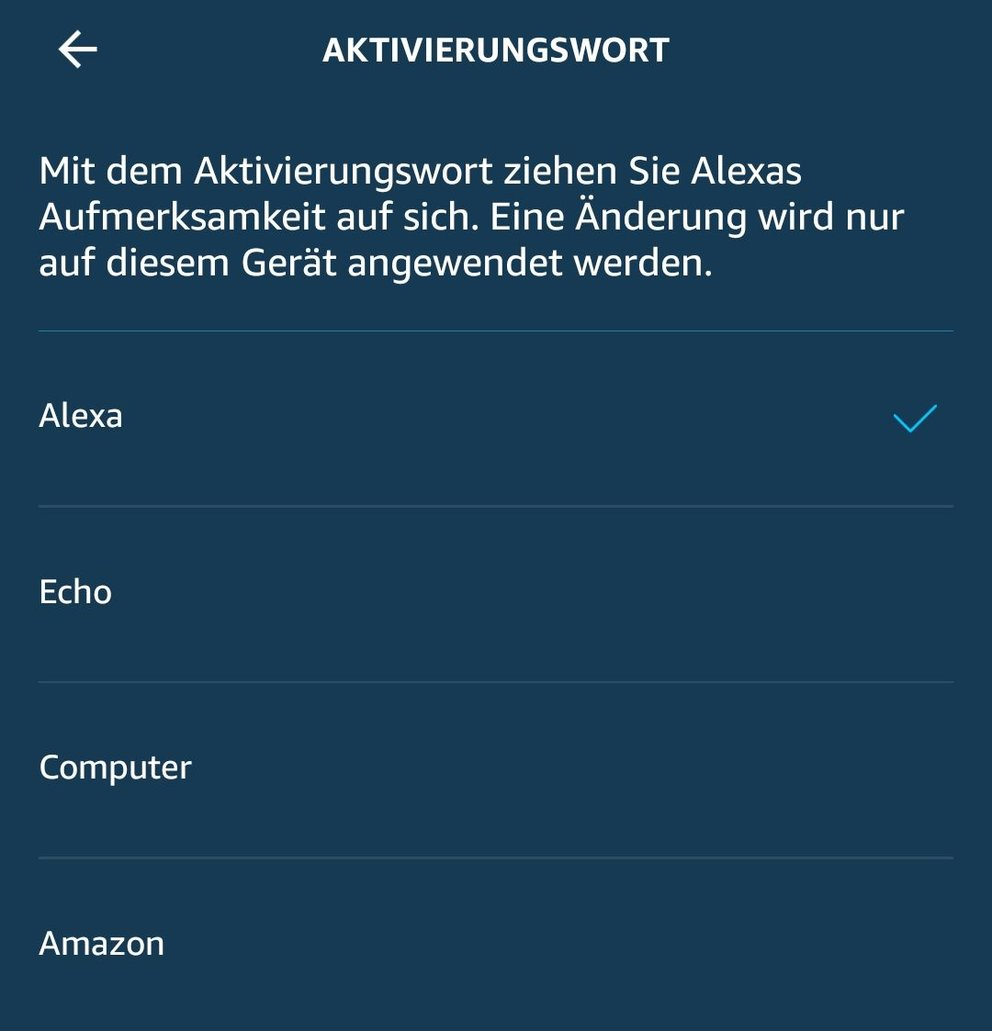 amazon-alexa-namen_giga
