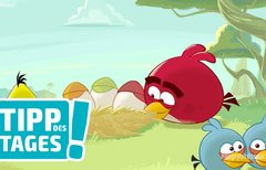 Angry Birds Space gratis im...