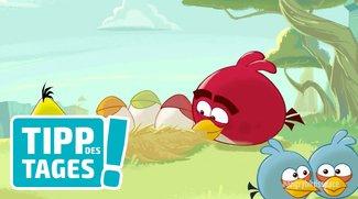 Angry Birds Space gratis im App Store