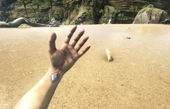 ARK - Survival Evolved: Spiel...