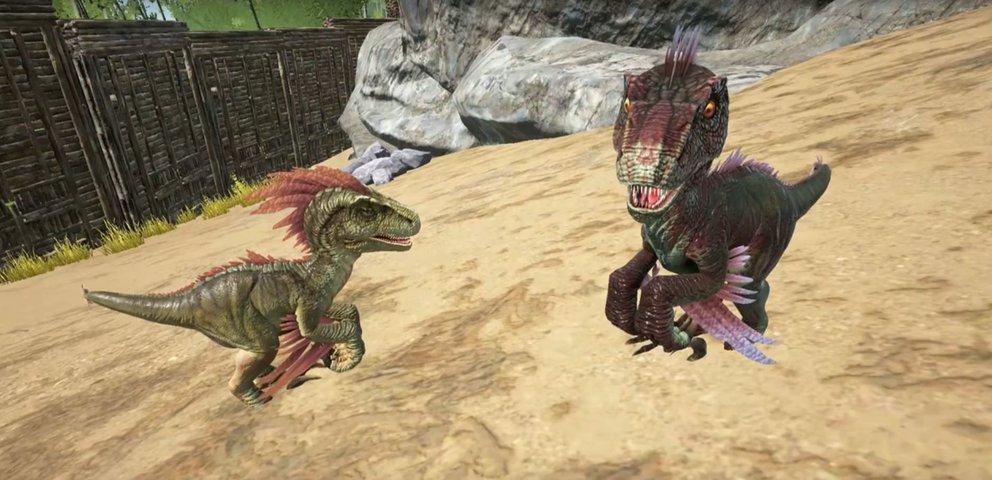 Wie putzig! Selbstgezüchtete Dinos sehen nicht nur niedlich aus - ihre Werte können auch viel besser als bei den gezähmten Kollegen sein.
