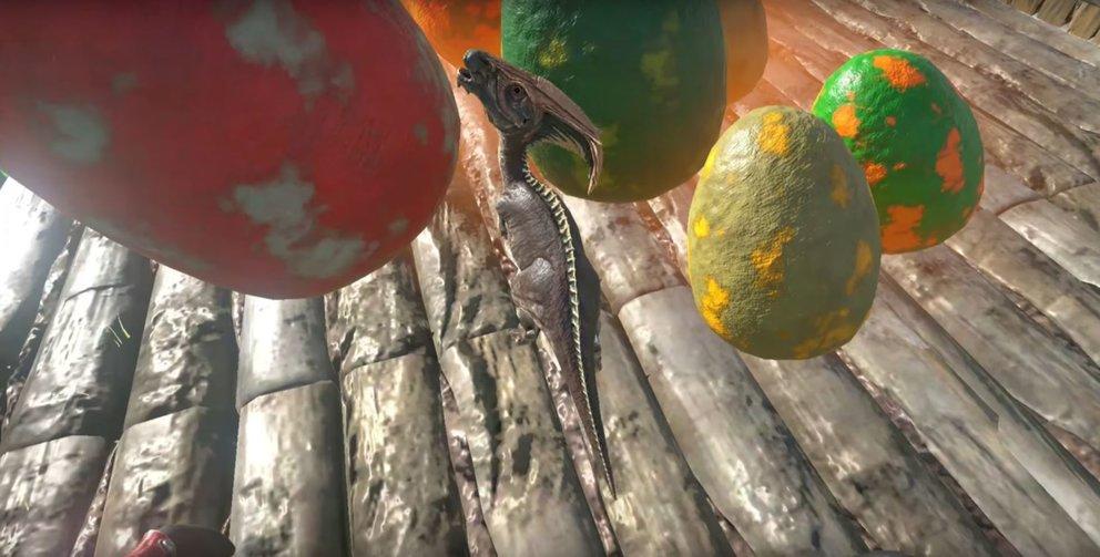 Bis zu 10 Eier können mit etwa 8 Klimaanlagen drumherum ausgeschlüpft werden.
