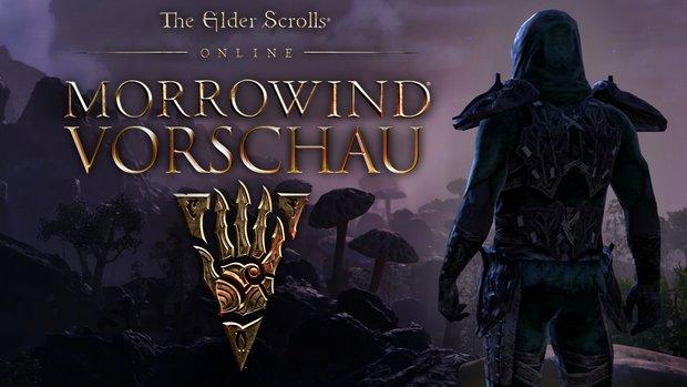 The Elder Scrolls Online Morrowind in der Vorschau: Der perfekte Zeitpunkt für Quereinsteiger