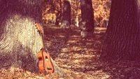 Traurige Lieder: Songs für melancholische Stunden